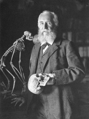 Ernst Haeckel at the grand old age of 85.